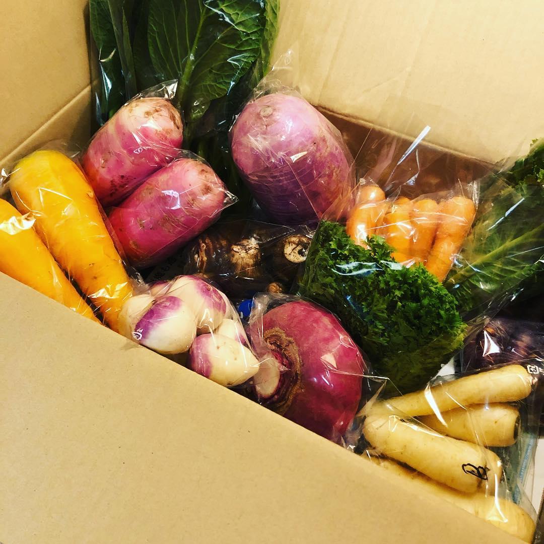[おはしどころ菜でしこ] 当店の看板メニューの一つの 「無農薬有機野菜の盛り合わせ」 小川町から 農家さん直送で 届けていただいております  スーパーでは並んでない 珍しいお野菜達️ 土を作るのに半年かけていると言う こだわりのお野菜を 使わせていただいております