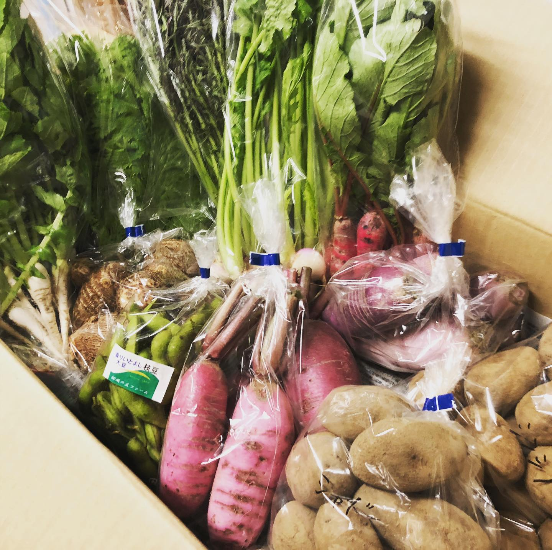 [おはしどころ菜でしこ]   新鮮な無農薬有機野菜たちが 今日も 届きました   土を作るのに半年かけている 小川町のこだわり農家さんから 直接送っていただいてます     #おはしどころ菜でしこ #本庄駅南口ロータリー内 #月曜日定休 #17:00オープン  #なでしこ #本庄女子会 #本庄貸切 #風の丘ファーム